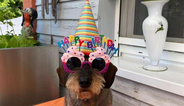 Happy Birthday Bergl